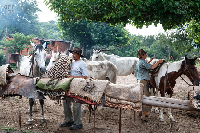 Salta Province, Argentina - January 6, 2012: Gauchos tending to horses at an estancia near Guemes