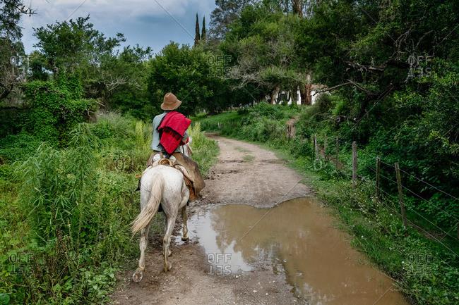 Gaucho riding a horse at an estancia near Guemes in Salta Province, Argentina