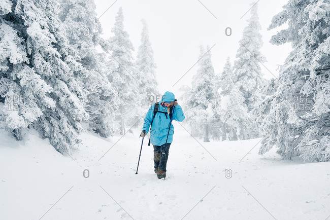 Woman hiking in snowy forest