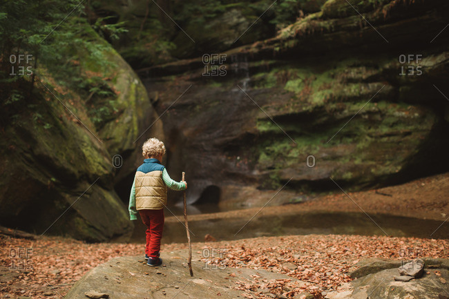 Little boy exploring near a stream in the woods