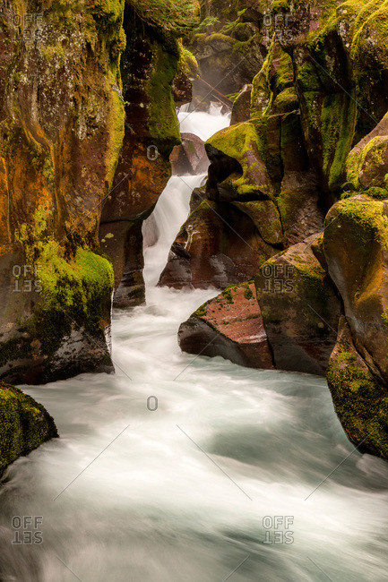 Stream cascading between mossy rocks, Avalanche Creek in Glacier National Park, Montana