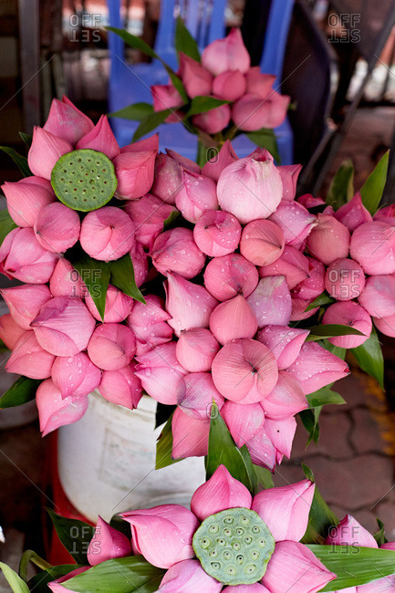 Lotus flowers in Vietnamese market