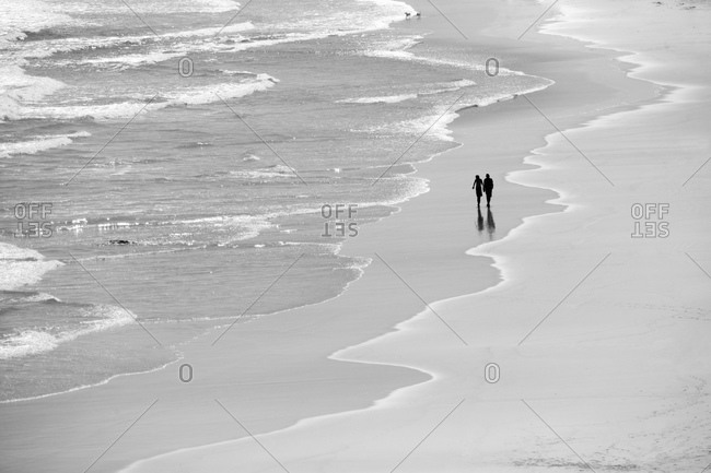 Couple walking dogs along picturesque beach