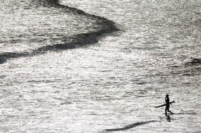 Surfer carrying surf board, wading out to sea
