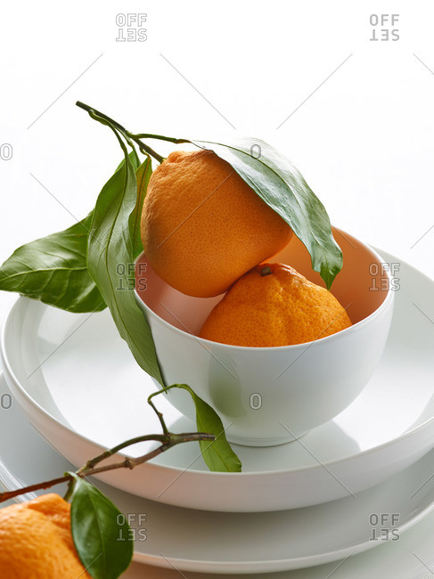 Fresh picked oranges in a white bowl