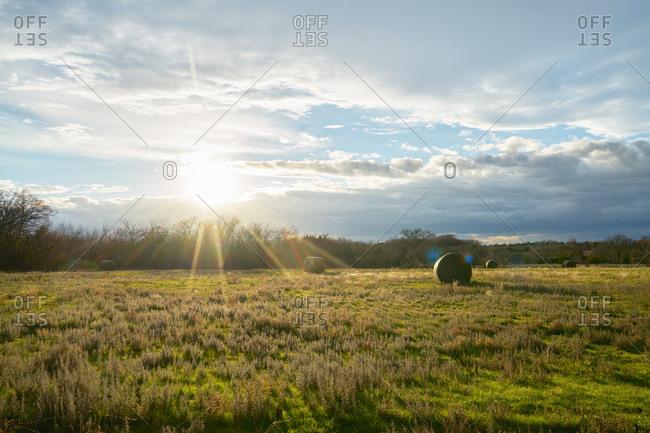Hay bales on a farm field in winter