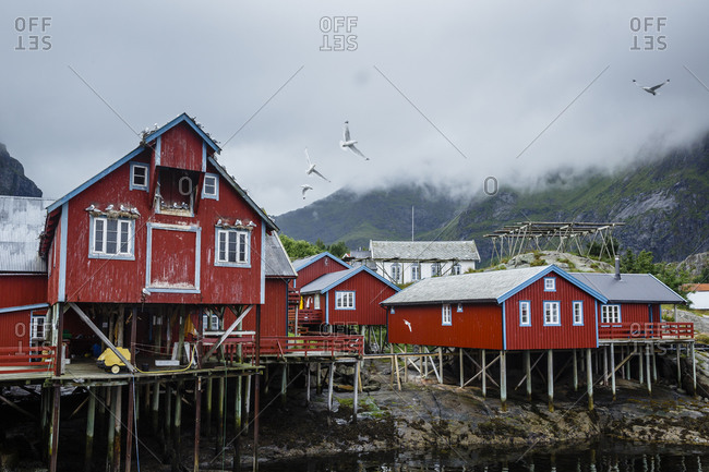 Traditional fishing cabins at the fishing Village of Moskenes, Lofoten islands, Norway