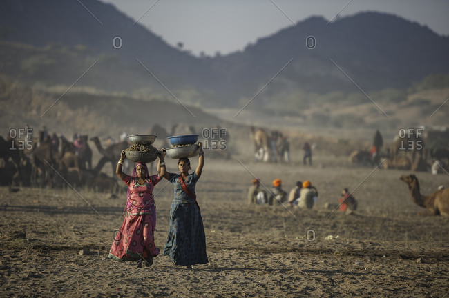 Rajasthan, India - November 19, 2015: Women carrying large bowls on their heads across the desert in Pushkar, India