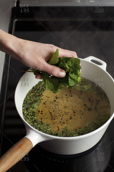 Hand putting fresh mint leaves into boiling water for tea