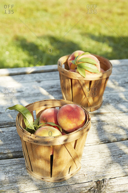 Wooden baskets of peaches on table in orchard