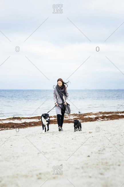 Woman walking two dogs on beach
