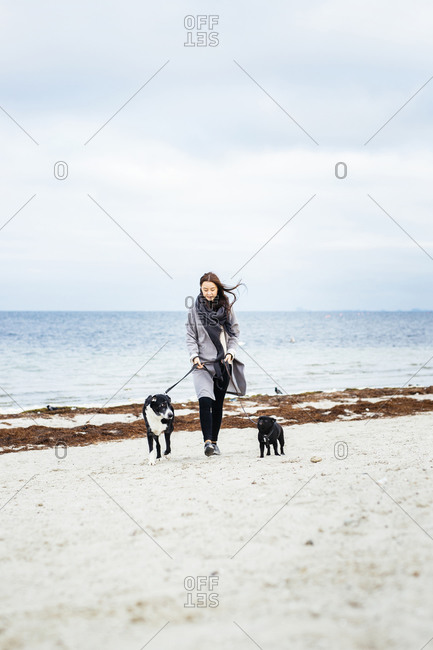 Woman walking two dogs on beach