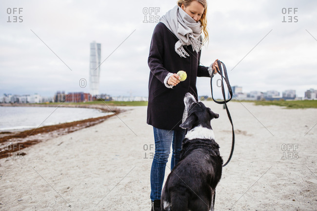 Woman holding tennis ball for dog