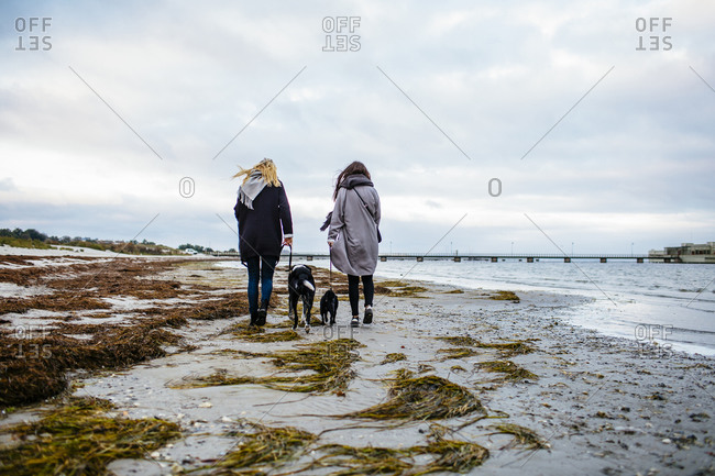 Two women walking dogs on beach