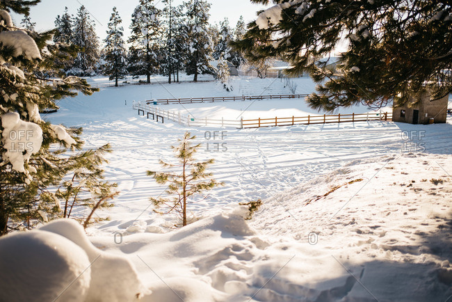 Snow covered horse arena