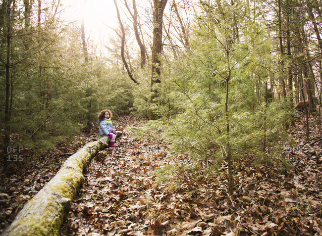 Girl sitting on a fallen tree in the woods in winter