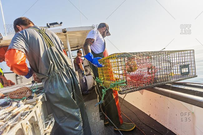 Fishermen preparing lobster traps