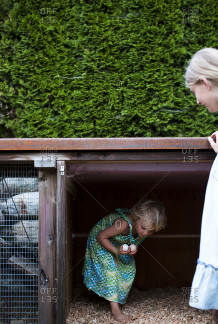 A young child retrieves fresh eggs from the family chicken coop in the backyard while her sister waits outside