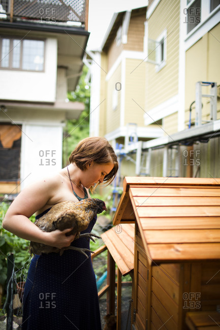 A woman putting a chicken back into a backyard coop