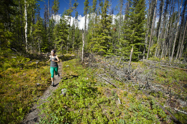 Fit woman trail running in Bowron Lake Provincial Park