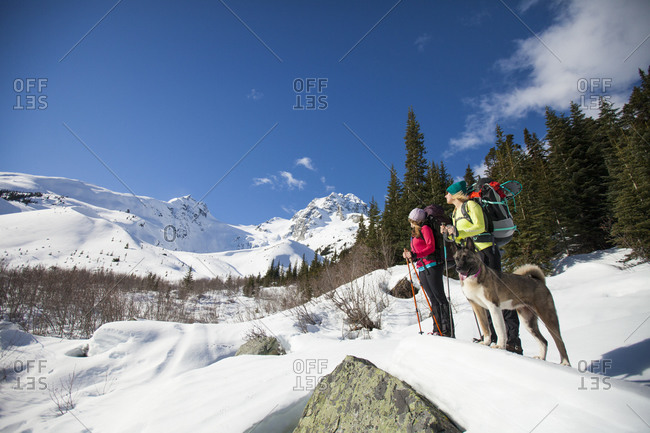 Two young woman admire the view while hiking with their dog below Joffre Mountain and Matier Peak