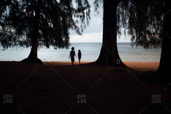 Brother and sister walking among tall trees on a beach