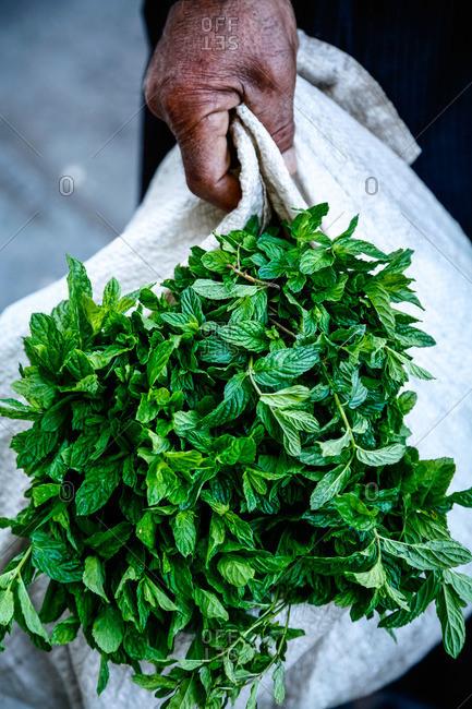 Hand holding a sack of mint leaves in Karak, Jordan
