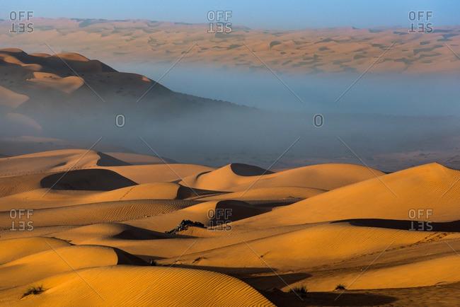 Desert landscape with fog