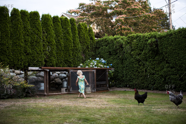 A young girl carrying a pail to a backyard chicken coop in Seattle, WA