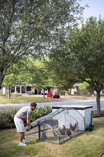 Man working on a backyard chicken coop