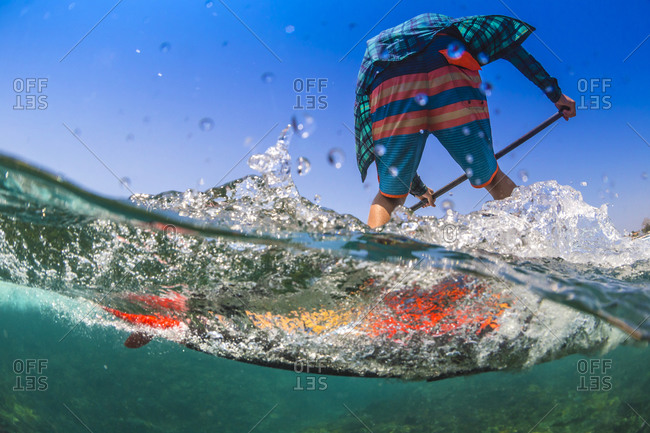 Low angle view of a Sup surfer in tropical water