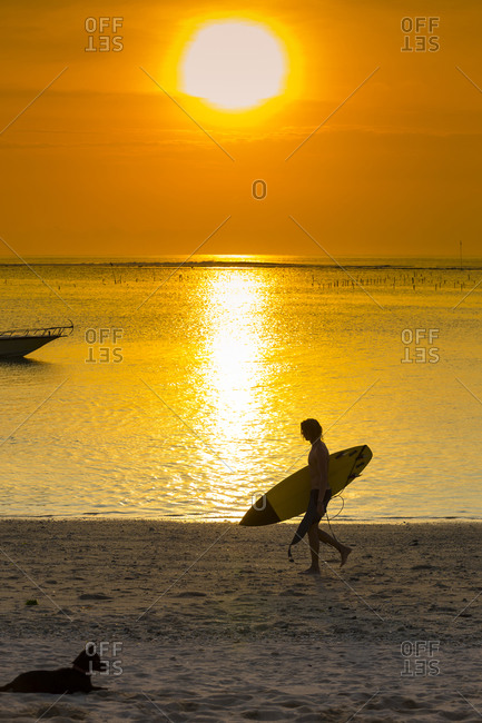 Surfer on the ocean beach at sunset