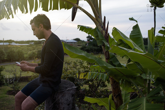 Man using a smartphone in a tropical location