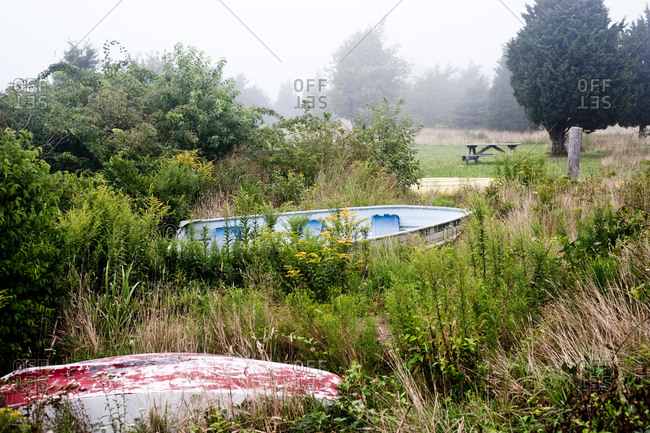 Two fishing boats among weeds