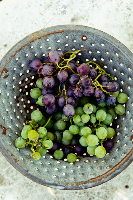 Grape clusters in a strainer