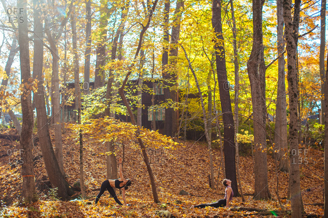 Two women practicing yoga in the woods
