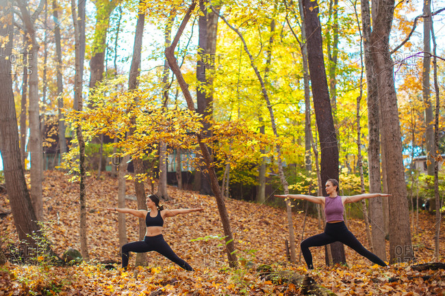 Two women practicing yoga in the forest