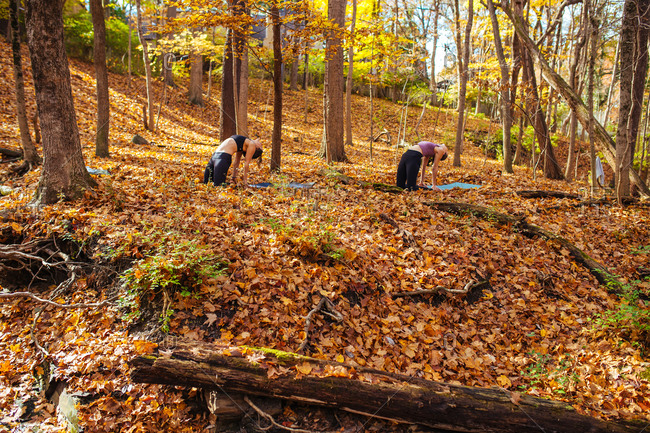 Two women doing yoga in the forest
