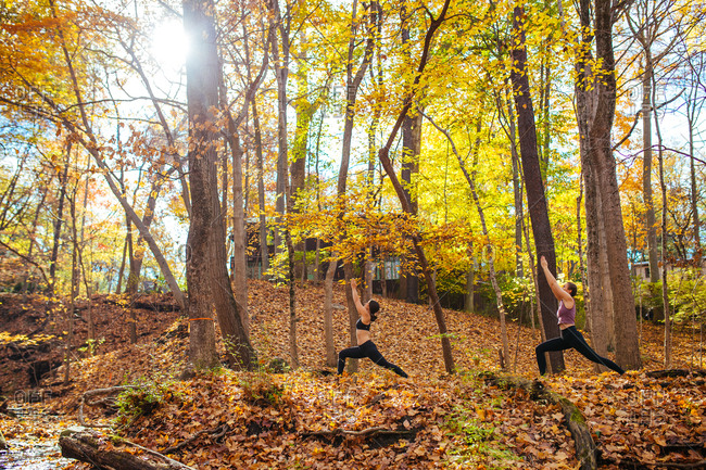 Two women practicing yoga together in the forest