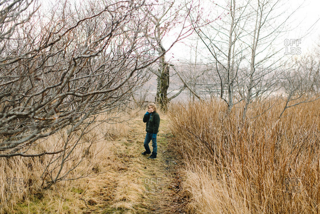 Boy on a path in tall grass