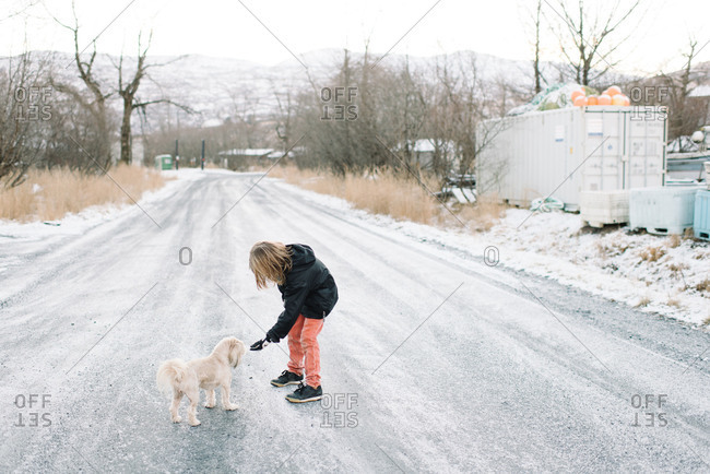 Boy reaching hand out to dog on rural road