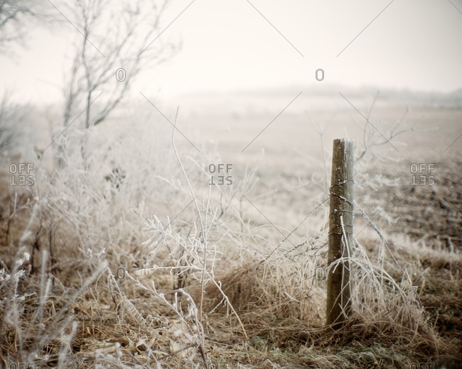 Hoarfrost on a fence post