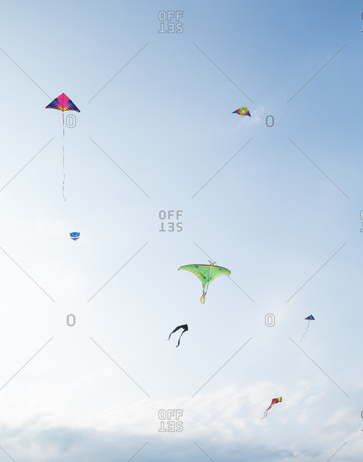 Variety of kites flying in the air