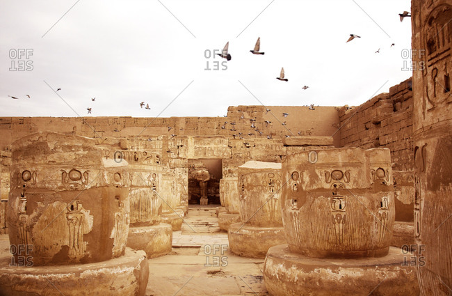 Birds flying over temple in Egypt