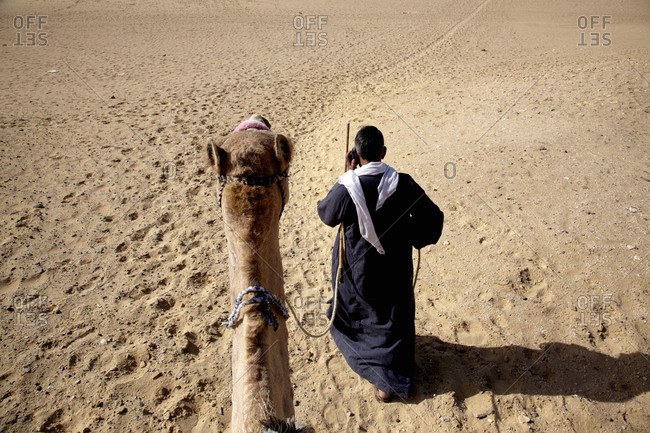 View of camel driver and head of camel from its back