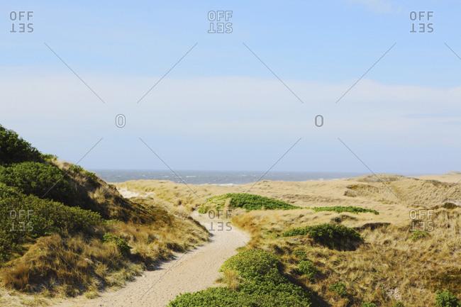 Grassy oceanfront cliffs in Scandinavia