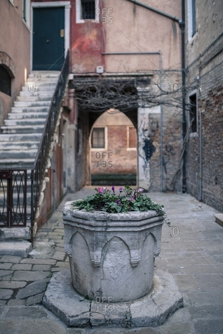 Small square with well filled with flowers, Venice, Italy