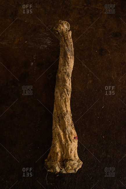Gnarled root on stone background