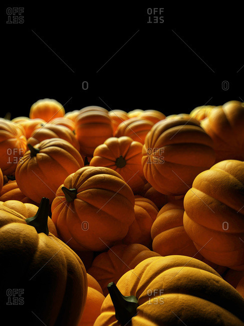 Digital illustration of pumpkins