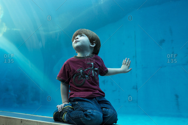 Boy looking up at aquarium tank
